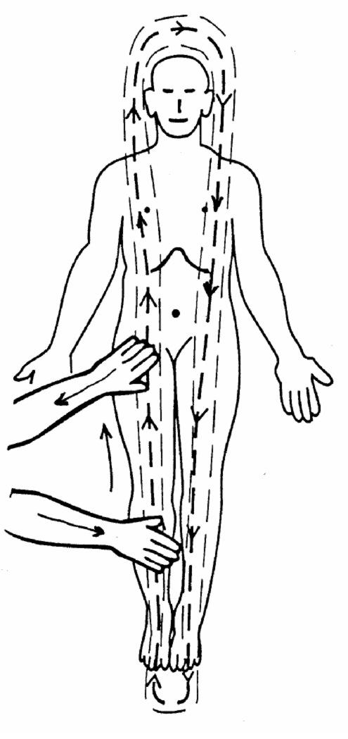 Shen Diagram